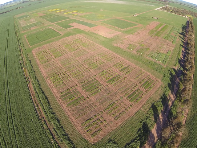 Aerial photo of the Hart trial site 2014
