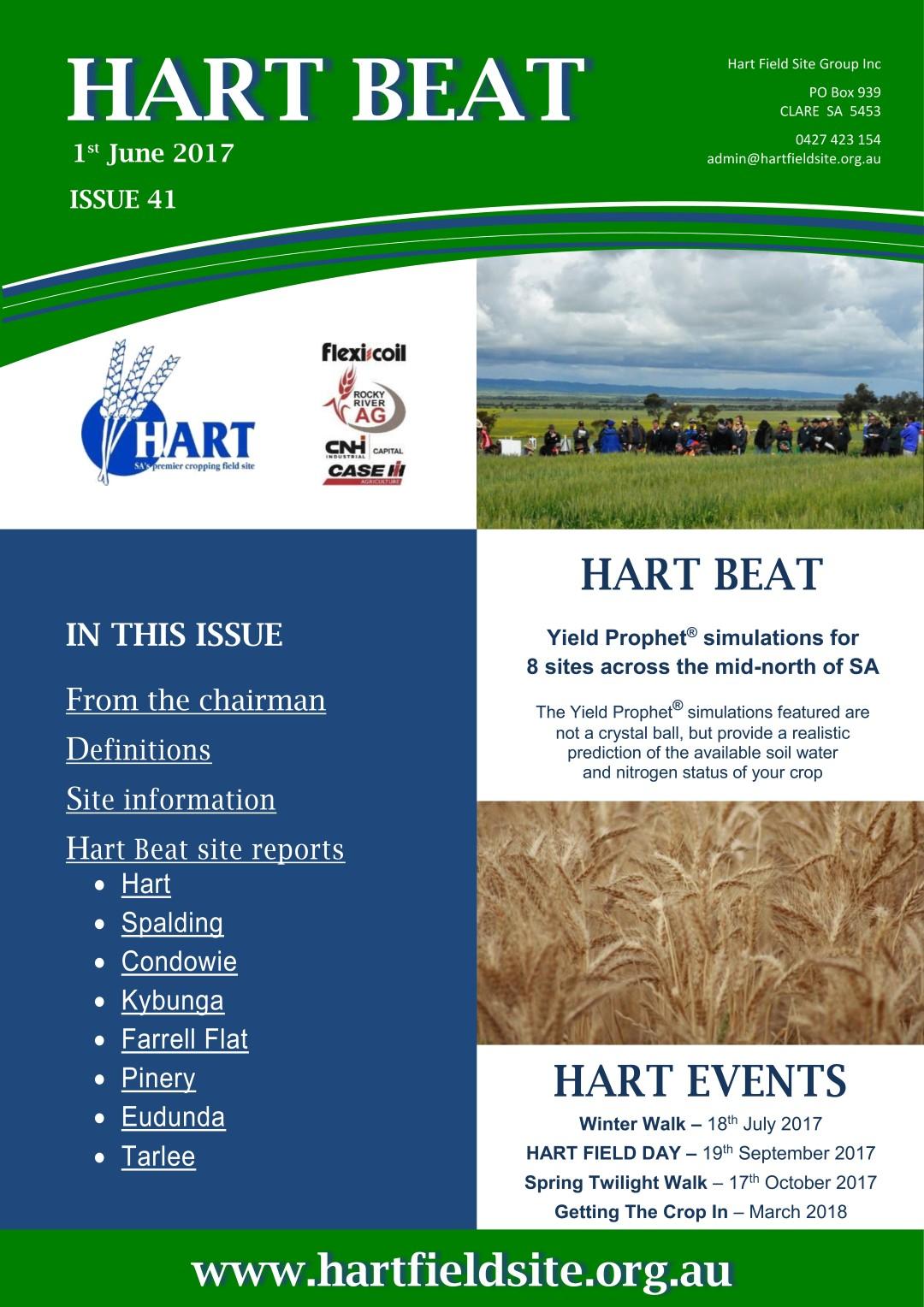 Hart Beat 41