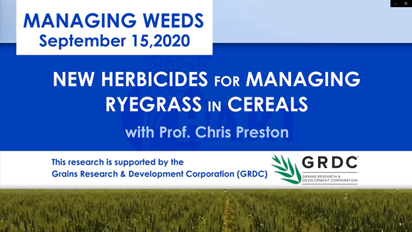 VIDEO: New herbicides for managing ryegrass in cereals with Professor Chris Preston