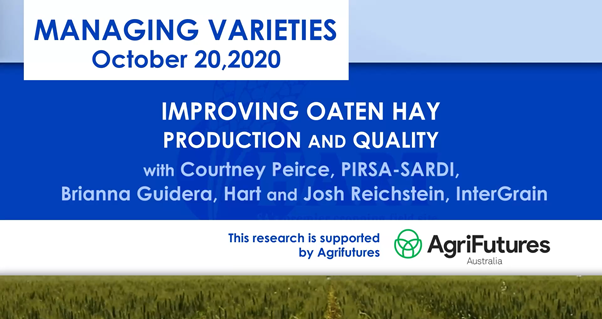 VIDEO:IMPROVING OATEN HAY PRODUCTION & QUALITY with Courtney Peirce; PIRSA-SARDI & Brianna Guidera; Hart