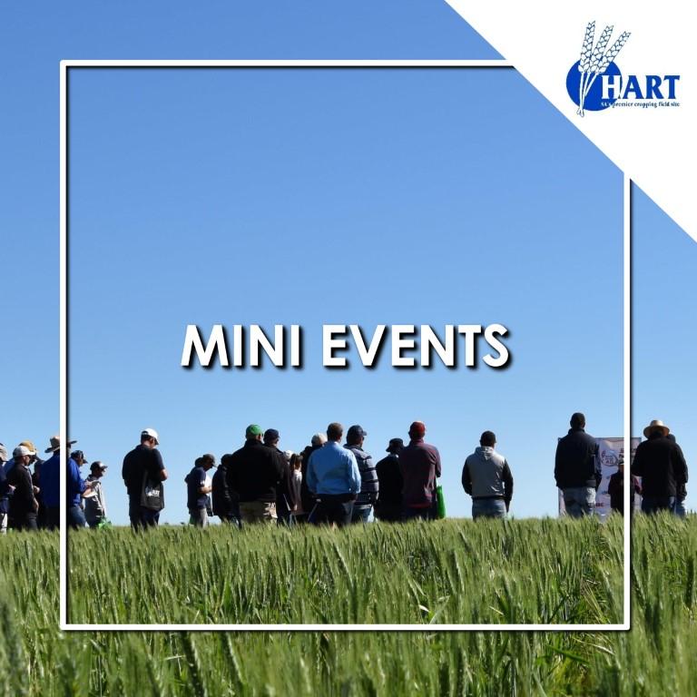 Hart Field Day 2020 - Mini events