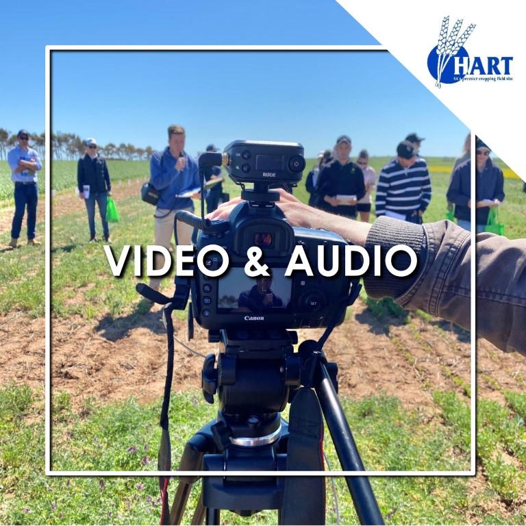 Hart videos