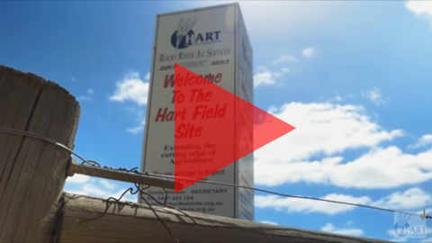 Hart Field Day video