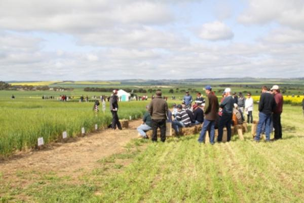 Barley Agronomy with Kate Bourke